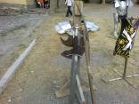 2011 tigrenok foto slavika onipko 051