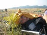 2011 tigrenok foto vlada bykova 100