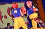 2012 tigrenok - festival vostochnyh edinoborstv v art-kveste 061