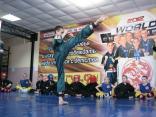 2015 may den shkoly lisichansk 080
