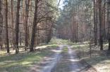 2019 pohod lisichansk gsm 5 aprelya 024