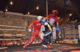 Serbin 2012 chemp. mira kikboksing 1-4 iyulya 465
